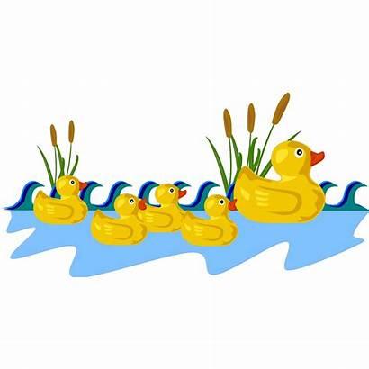 Duck Pond Clipart Rubber Clip Svg Cartoon