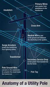 Energylink  Look Up  Anatomy Of A Utility Pole