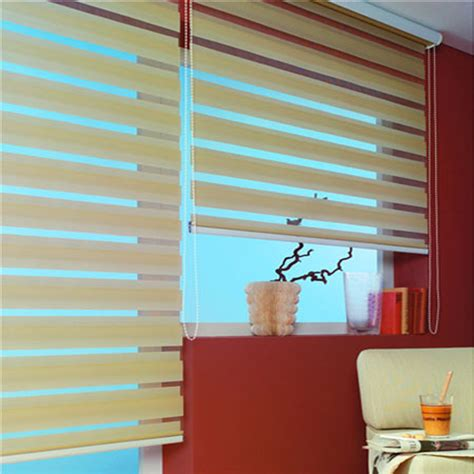 Duo Vision Blinds   Picture Gallery