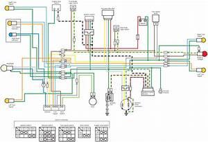 Monkey Bike Z50jp Wiring Diagram  61605