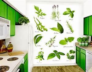 Fototapete Für Küche : fototapete kr utermix tapete ~ Markanthonyermac.com Haus und Dekorationen