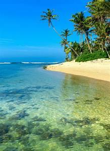 Holidays, To, The, East, Coast, Of, Sri, Lanka