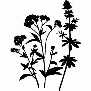 bouquet stickers muraux nature With tapis chambre bébé avec envoyer un bouquet de fleurs Ï domicile