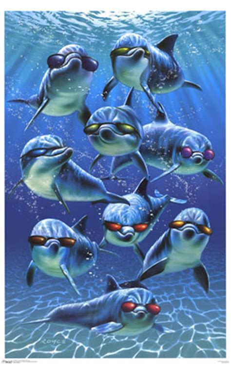 dolphins with sunglasses Myspace comments and graphics