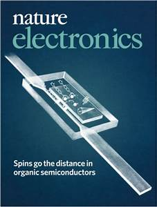 19 02 2019  U2013 Joint Publication By Organic Spintronics Team