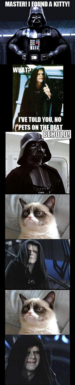 Star Wars Grumpy Cat Lol Movies Lold Pinterest