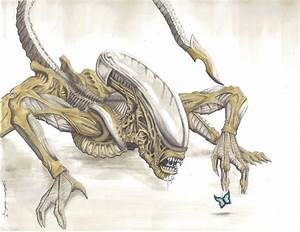 17 Best images about Xenomorph on Pinterest | Xenomorph ...