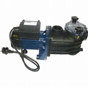 Piscine Gonflable Avec Pompe : pompe de piscine avec pr filtre aqualux 9 5 m h leroy ~ Dailycaller-alerts.com Idées de Décoration