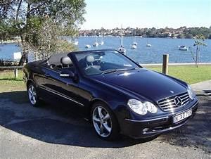 Mercedes Clk Cabriolet : 2005 mercedes benz clk class user reviews cargurus ~ Medecine-chirurgie-esthetiques.com Avis de Voitures
