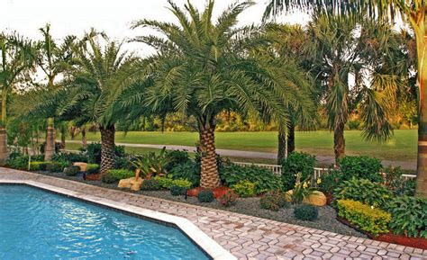 florida landscape pictures welcome to bamboo landscapes about us specializing in design and installation of creative