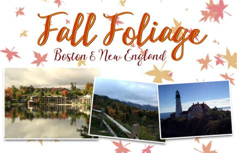 bostonnew england fall foliage october kicd fm news talk