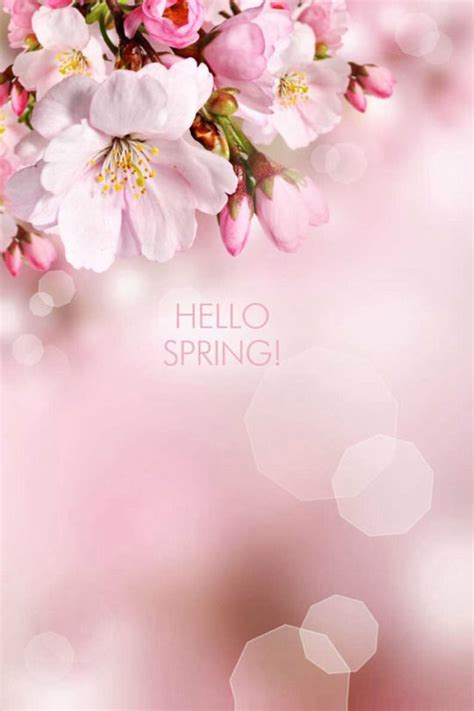 Hello Spring With Flowers Pictures, Photos, And Images For