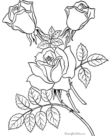 coloring pages sheets  roses  flower pic