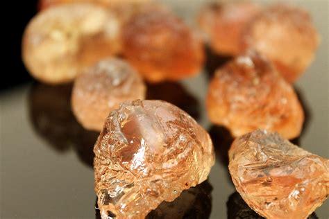 gomme arabique cuisine gomme arabique wikipédia
