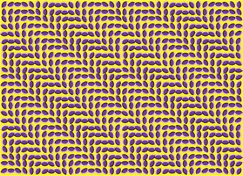 In The Minds Eye How Do Optical Illusions Work
