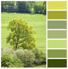 Farbpalette Wandfarbe Grün : t rkis und gr n lassen sich mit braun kombinieren ideen rund ums haus pinterest wandfarbe ~ Indierocktalk.com Haus und Dekorationen