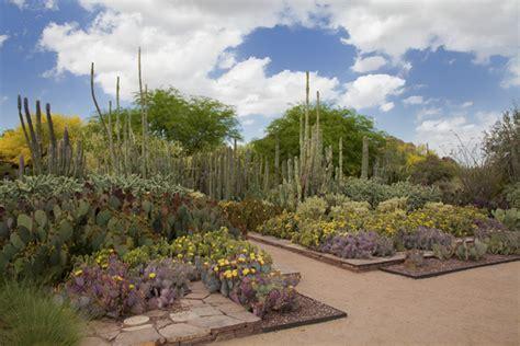 desert botanical gardens in desert botanical garden az things to do