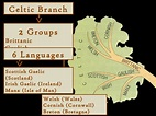 Celtic Languages by Chris Hall