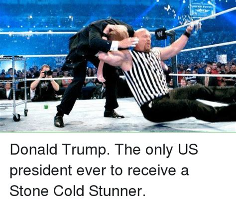Stone Cold Meme - stone cold stunner memes www pixshark com images galleries with a bite