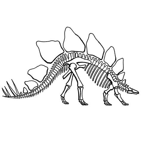 Kleurplaat Skelet Mens by Leuk Voor Skelet Een Stegosaurus