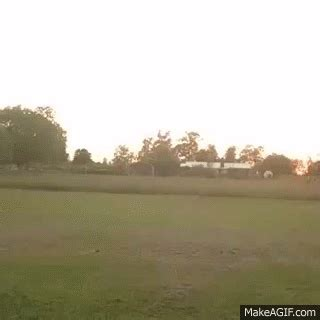 fat lady cartwheel fail    gif