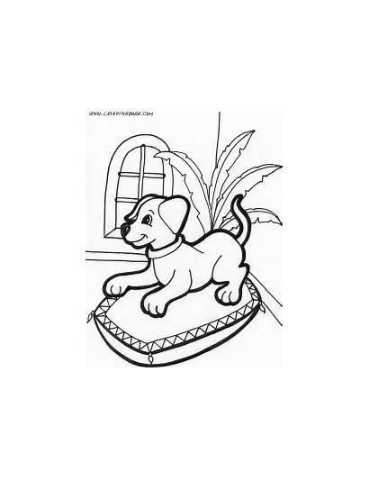 Coloring Puppy Pages Printable Puppies Dogs