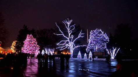 toledo zoo lights before christmas 2012 dancing lights