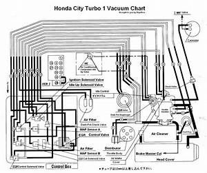 Wiring Diagram Honda City