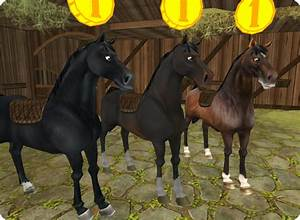 Soon You U0026 39 Ll Be Able To Have More Than One Horse