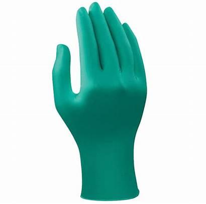 Gloves Medical Pngimg