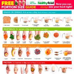 portion size guide australian healthy food guide