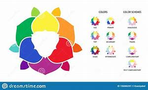 Color Wheel With Hue  Tint  Shades Variations  Primary