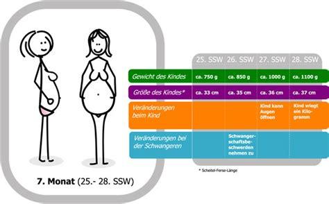 eisenwert schwangerschaft