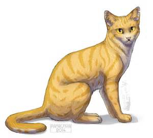 cat warriors warriors cats goldenflower by cat patrisiya on deviantart