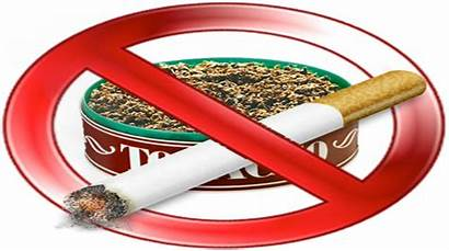 Tobacco Ban Plug Implement Activists Loopholes Fear