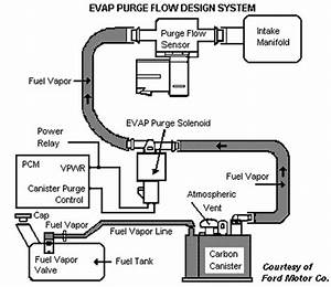 2004 Ford F 150 Fuel Rail Pressure Sensor  2004  Free Engine Image For User Manual Download
