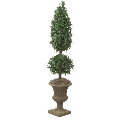 6 foot Laurel Cone and Ball Topiary: Potted   W-2450