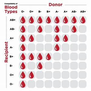 Ubc Researchers Have Found A Way To Convert Any Blood Type