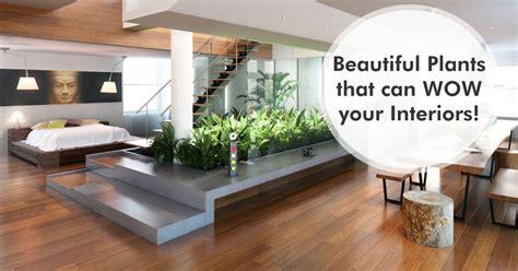dreamzone fashion interior graphic design web