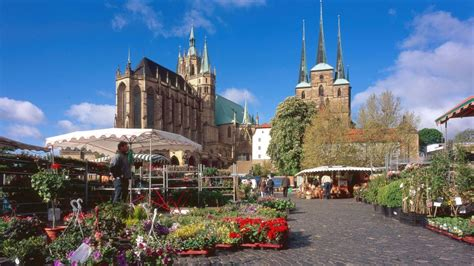 Blumen Und Gartenmarkt Bringt Flowerpower Auf Den