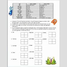 Biology Monster Genetics Instructions Punnett Square Worksheet Tpt