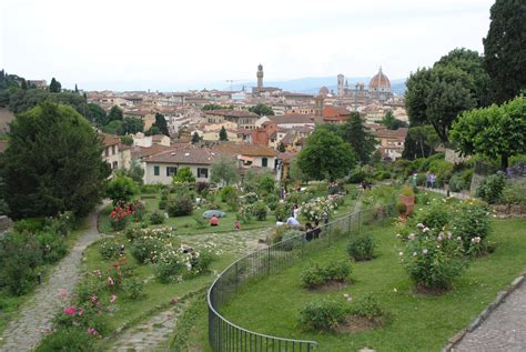 olive garden florence a garden with a view il giardino delle