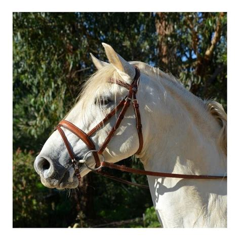 english bridle handmade bridles baroque classical