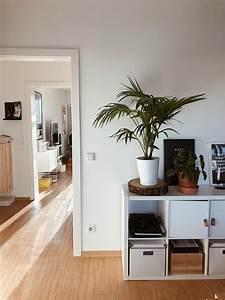 Ikea Kallax Ideen : ikea kallax bilder ideen couch ~ Eleganceandgraceweddings.com Haus und Dekorationen