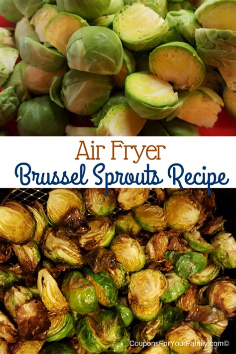 fryer air sprouts recipes brussel recipe airfryer fried healthy oven brussels egg cooking easy chicken vegetables thetaylor fryers healthier way