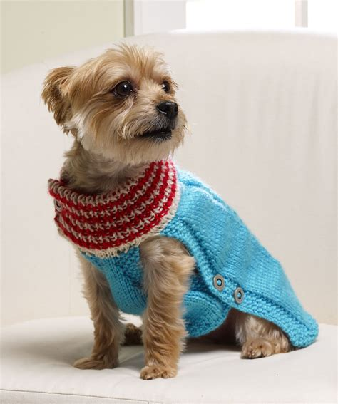doge sweater tiny sweater crochet pattern breeds picture