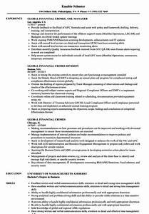 Coordinator Resume Examples Global Financial Crimes Resume Samples Velvet Jobs