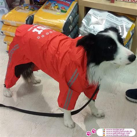 roten regenjacke  pfoten fuer grosse hunde mit kapuze