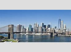 New York City Chapter Local Events & Information LLS
