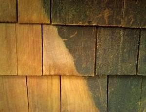 Comment Blanchir Du Bois : 4 utilisations du sel d 39 oseille que personne ne conna t ~ Melissatoandfro.com Idées de Décoration